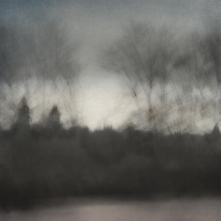 Row Photograph - Glimpse Of The Willamette by Carol Leigh