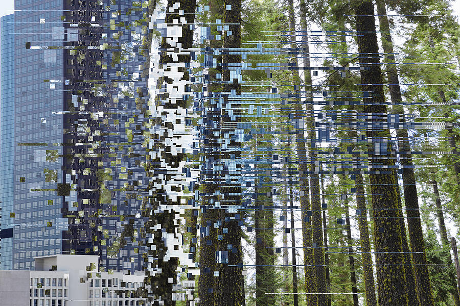 Glitchtransition Of City To Forest Photograph by Paul Taylor