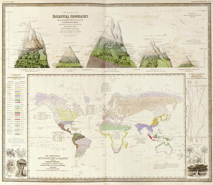 Plant Photograph - Global Botanical Geography by Library Of Congress, Geography And Map Division