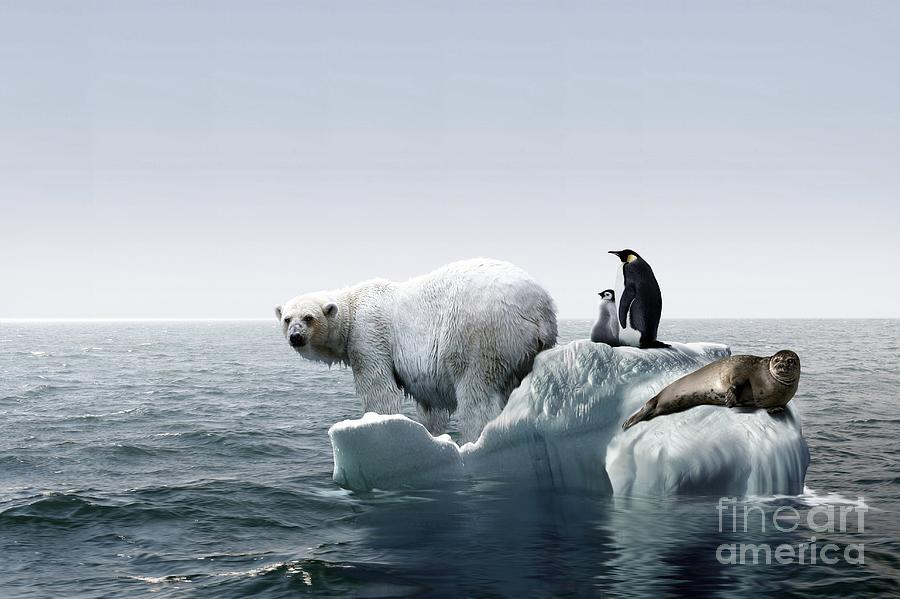 Global Warming Conceptual Image Photograph By Wieslaw Smetek