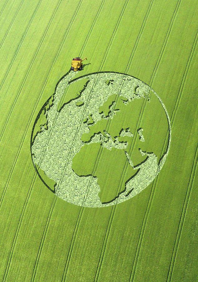 Globe Crop Circle In Green Field Digital Art by Jon Berkeley