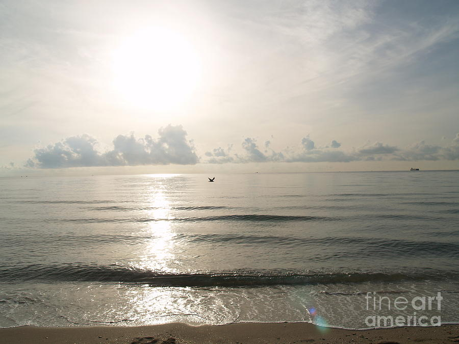 Glorious Morning At The Beach Photograph