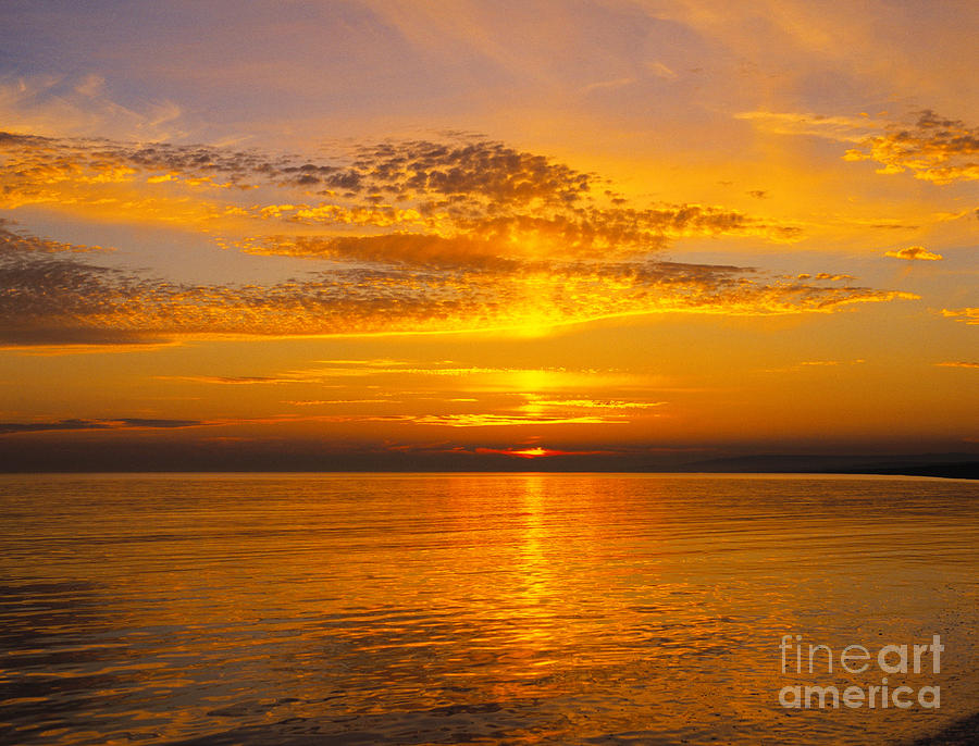 Dorset Photograph - Glory Of Nature by Lana Enderle