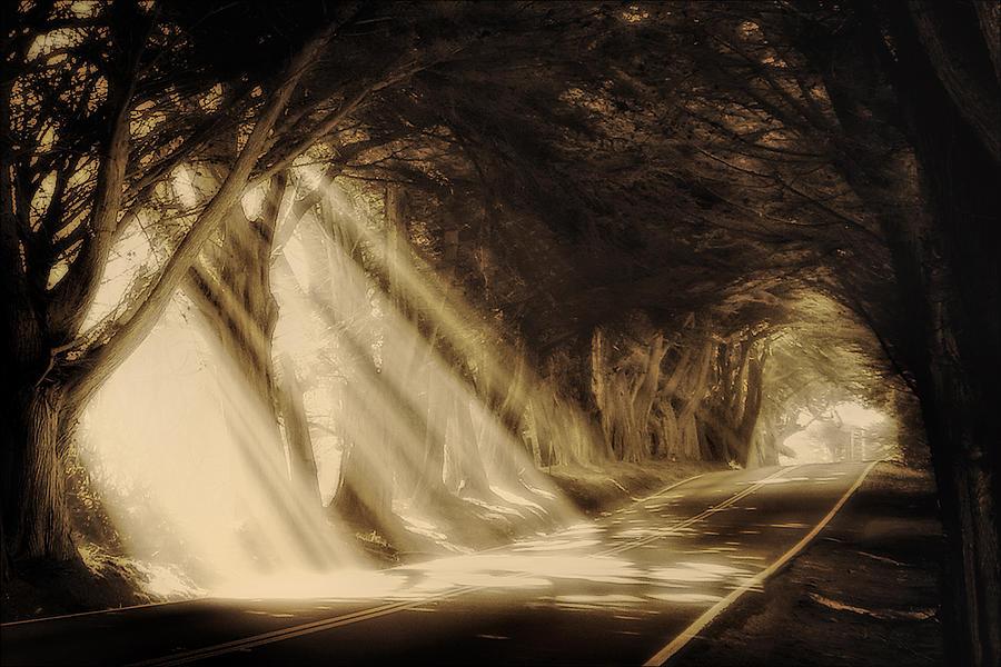 Sun Rays Photograph - Glory Rays by Priscilla Burgers