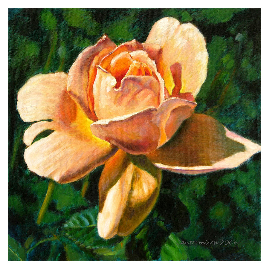 Rose Painting - Glow From Within by John Lautermilch