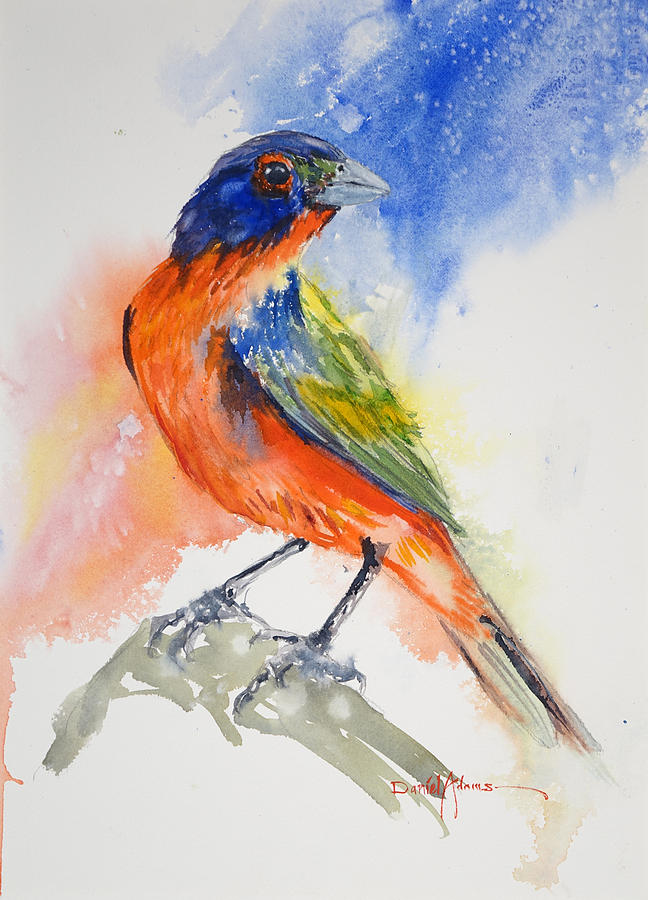 Bird Painting -  Da188 Glow Of The Painted Bunting Daniel Adams by Daniel Adams