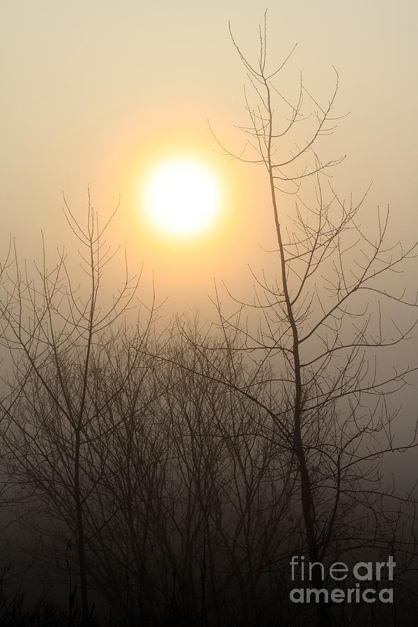 Sunrise Photograph - Glow by Rick Rauzi