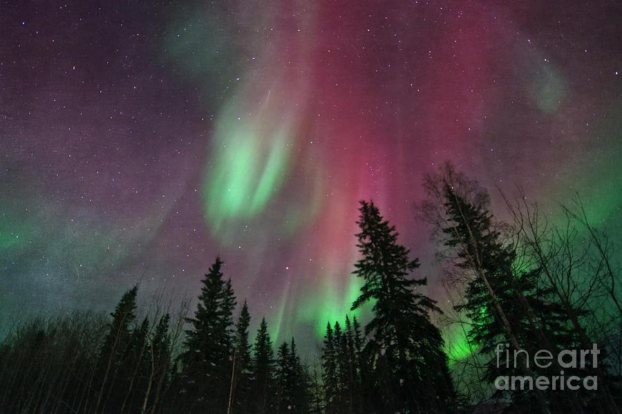 Northern Lights Photograph - Glowing Skies Textured by Priska Wettstein