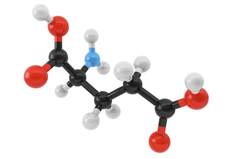 White Background Photograph - Glutamic Acid Amino Acid Molecule by Maurizio De Angelis/science Photo Library