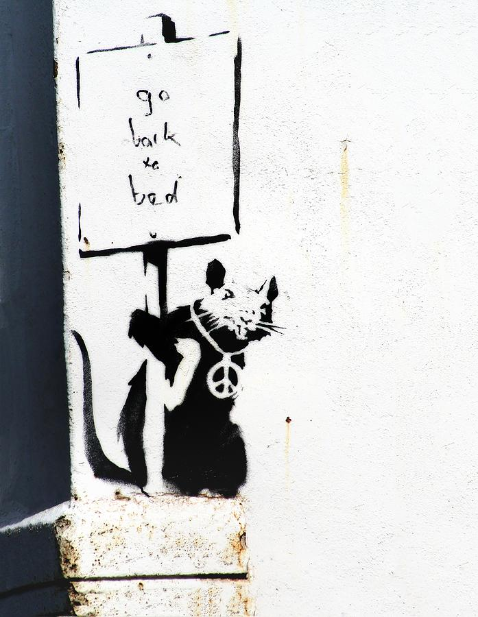Banksy Photograph - Go Back To Bed Protester by A Rey
