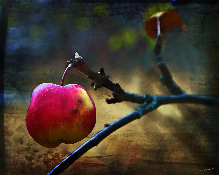 Apple Photograph - Go On Dearie  Take A Bite by Theresa Tahara