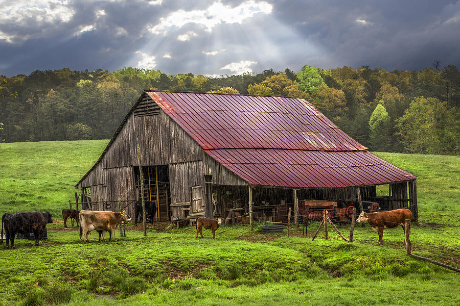 Appalachia Photograph - God Bless The Farmer by Debra and Dave Vanderlaan
