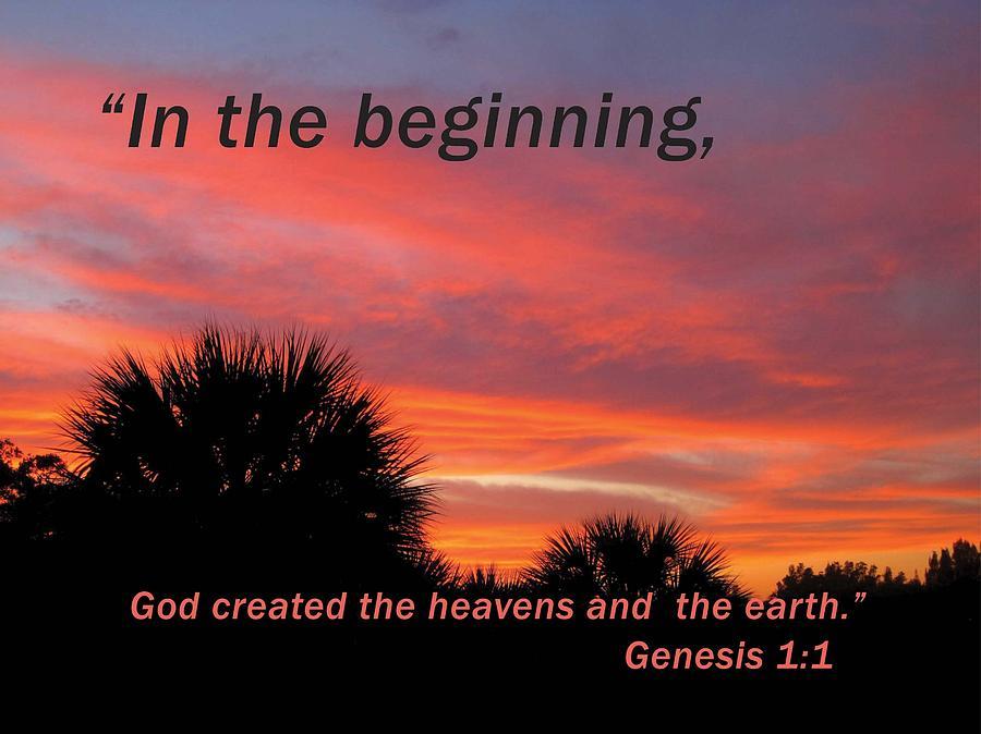 God S Creation Photograph By Stephanie Davis