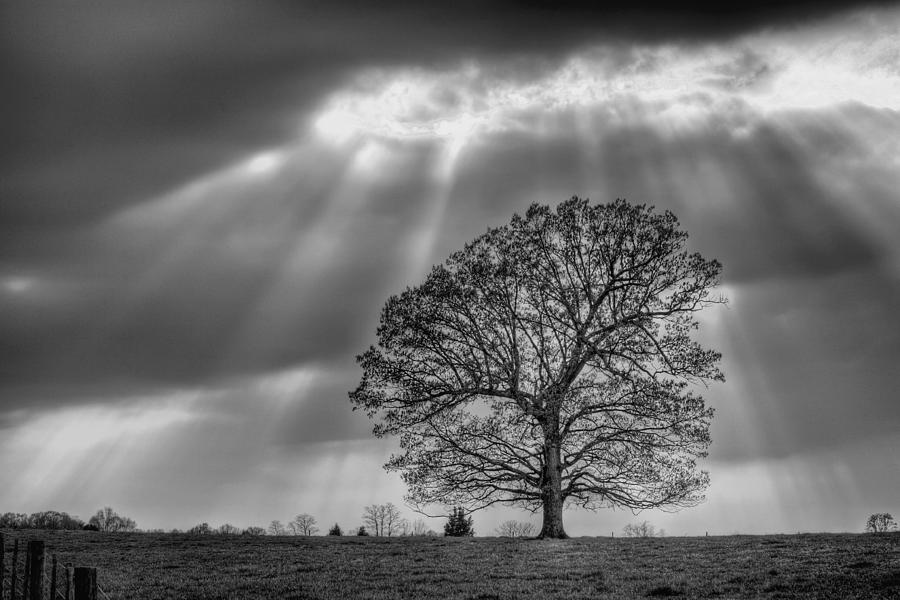 Shine Down Photograph - Gods Work by JC Findley