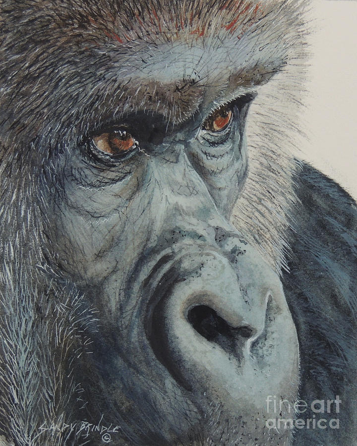 Going Ape...SOLD  by Sandy Brindle