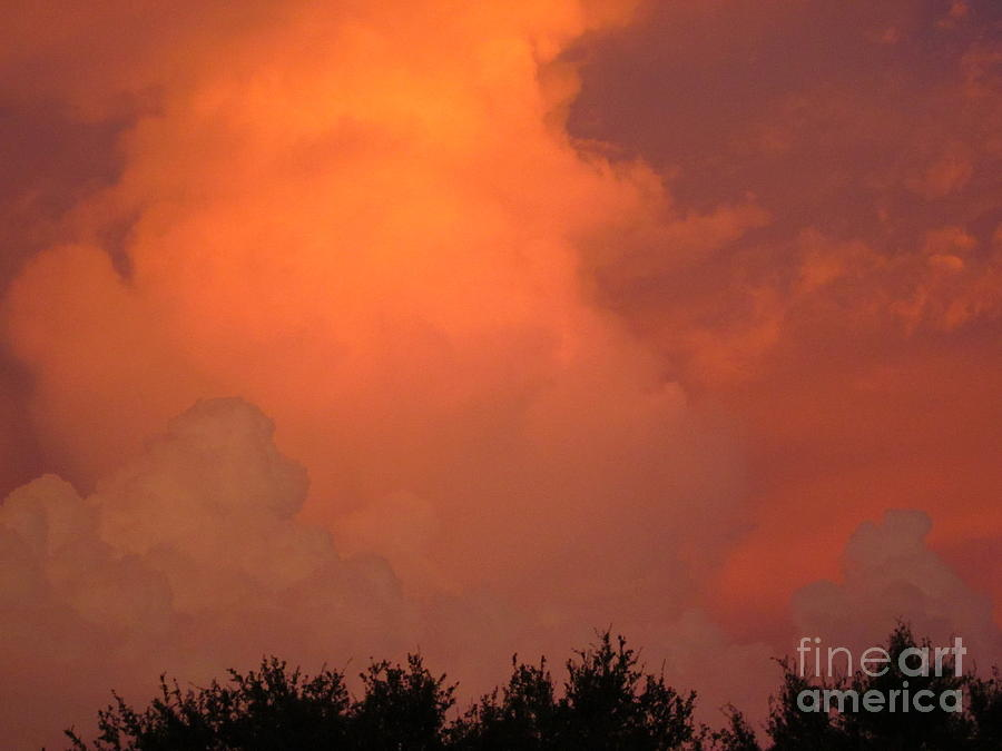 Sunset Photograph - Going Out With A Boom by Elizabeth Carr