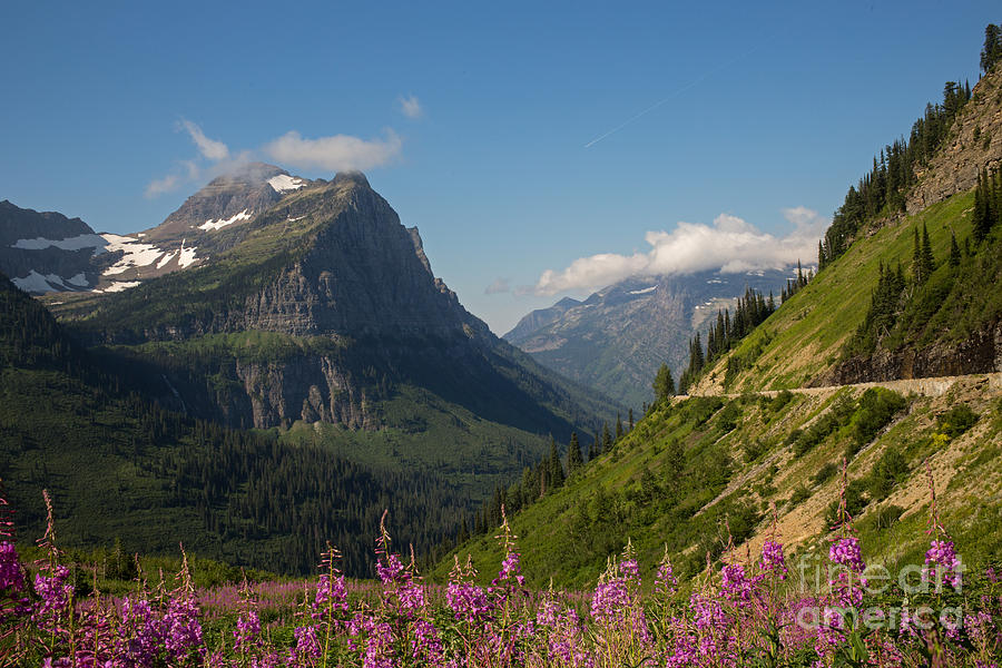 Glacier National Park Photograph - Going To The Sun Road by Natural Focal Point Photography