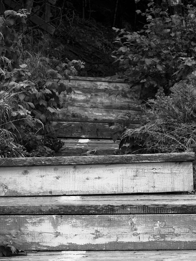 Going Up by Stan Wojtaszek