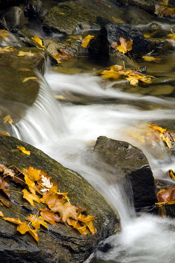 Fall Photograph - Going With The Flow by Christina Rollo