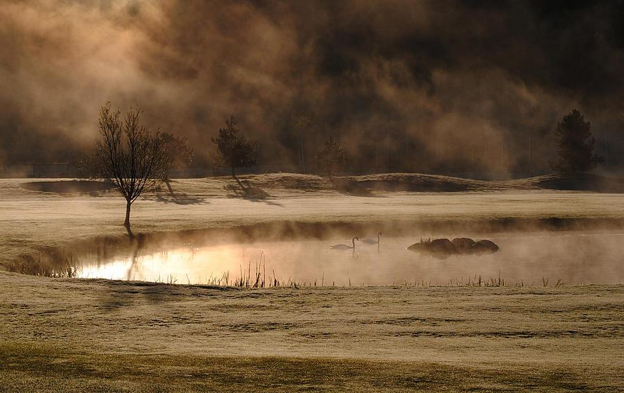 Mist Photograph - Gold And Copper by Kremena Nikolaeva