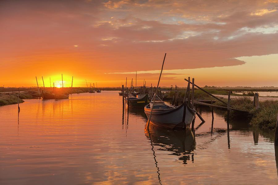 Gold Sun Photograph by Abelc.