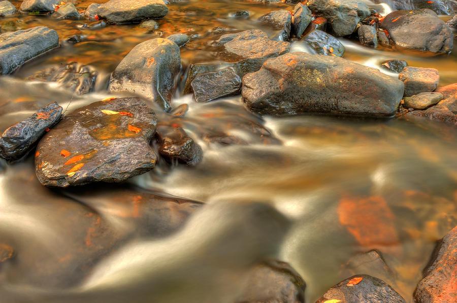 Golden Autumn Stream Photograph