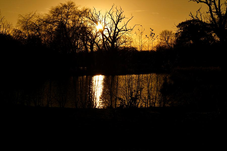 Sunset Photograph - Golden Brown by Dave Woodbridge