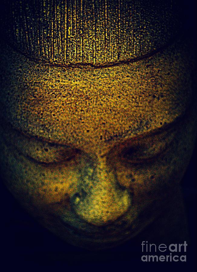 Buddha Photograph - Golden Buddha by Susanne Van Hulst