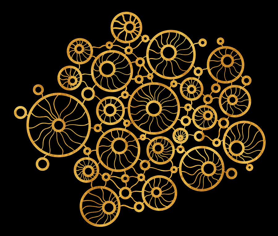 Gold Painting - Golden Circles Black by Frank Tschakert