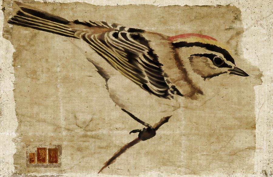 Bird Photograph - Golden-crowned Kinglet by Carol Leigh