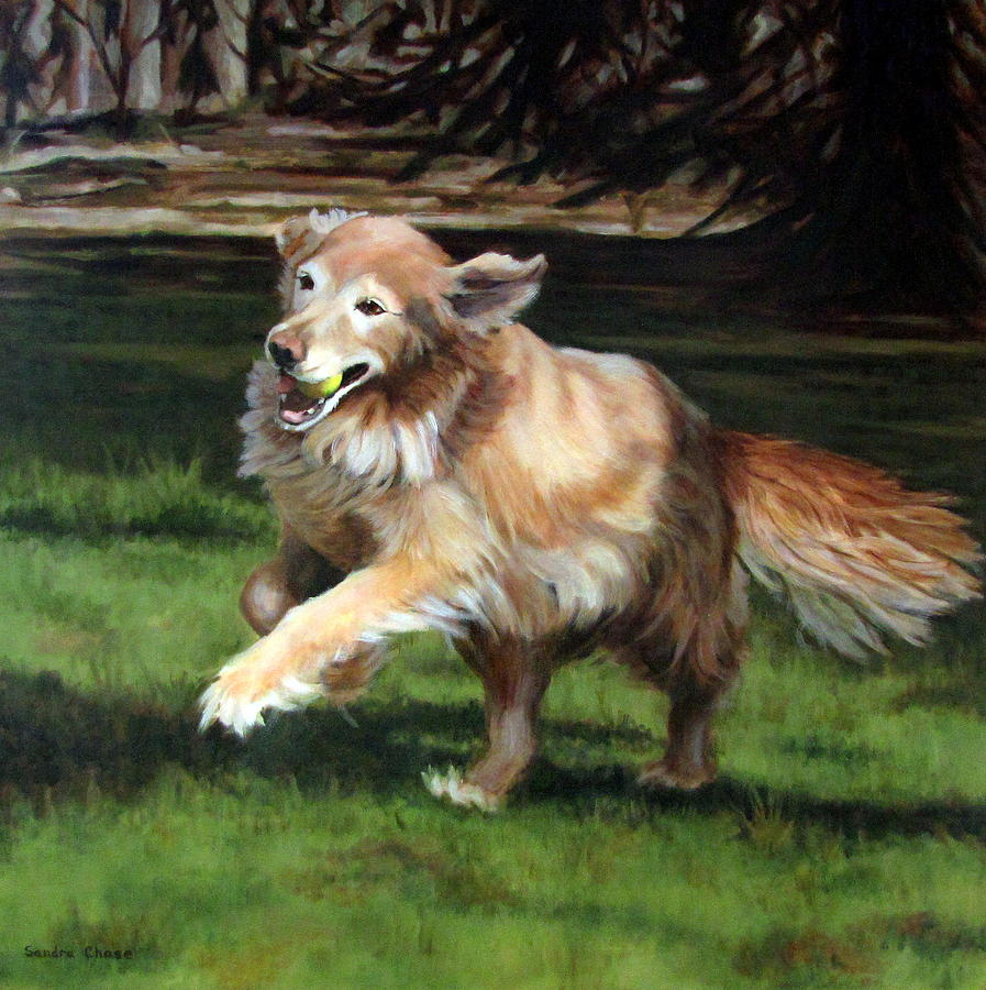 Dog Painting - Golden Days by Sandra Chase
