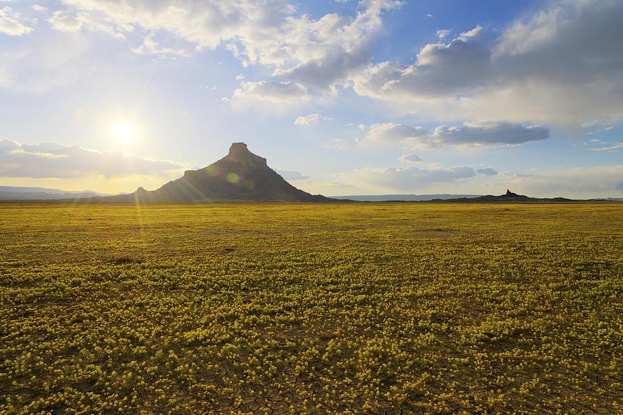 Utah Photograph - Golden Desert by Chad Dutson