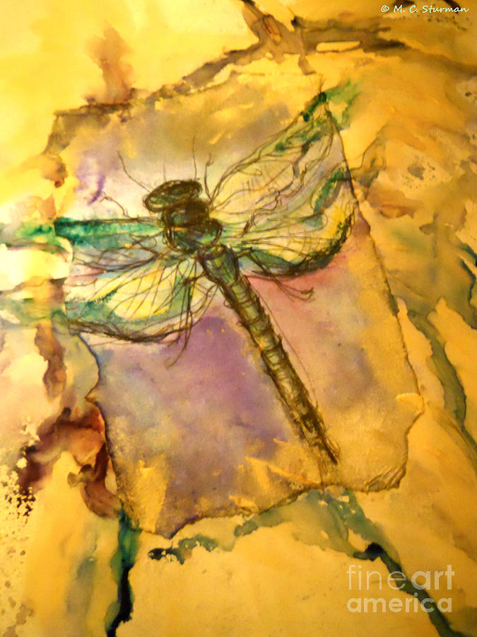 Dragonfly Painting - Golden Dragonfly by M C Sturman