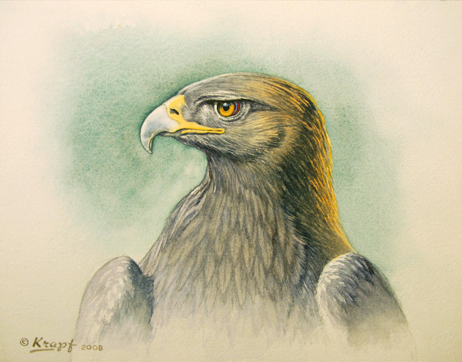 Wildlife Painting - Golden Eagle Portrait by Paul Krapf
