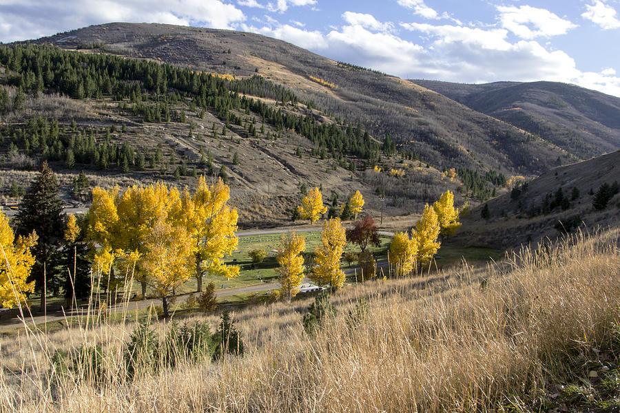 Autumn Photograph - Golden Fall In Montana by Dana Moyer