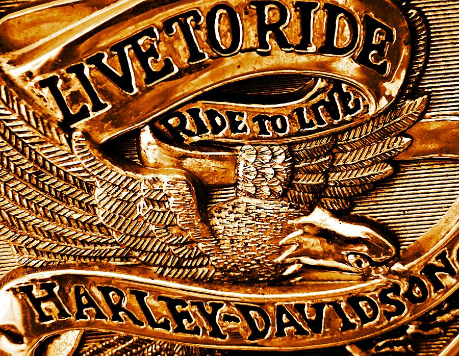 Logo Photograph - Golden Harley Davidson Logo by Chris Berry