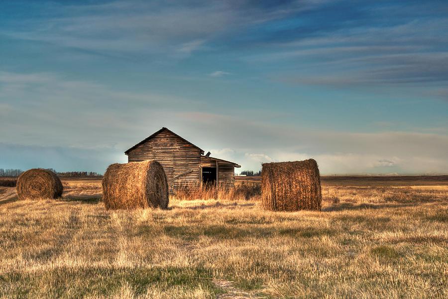 Texture Photograph - Golden Hay by Lisa Knechtel