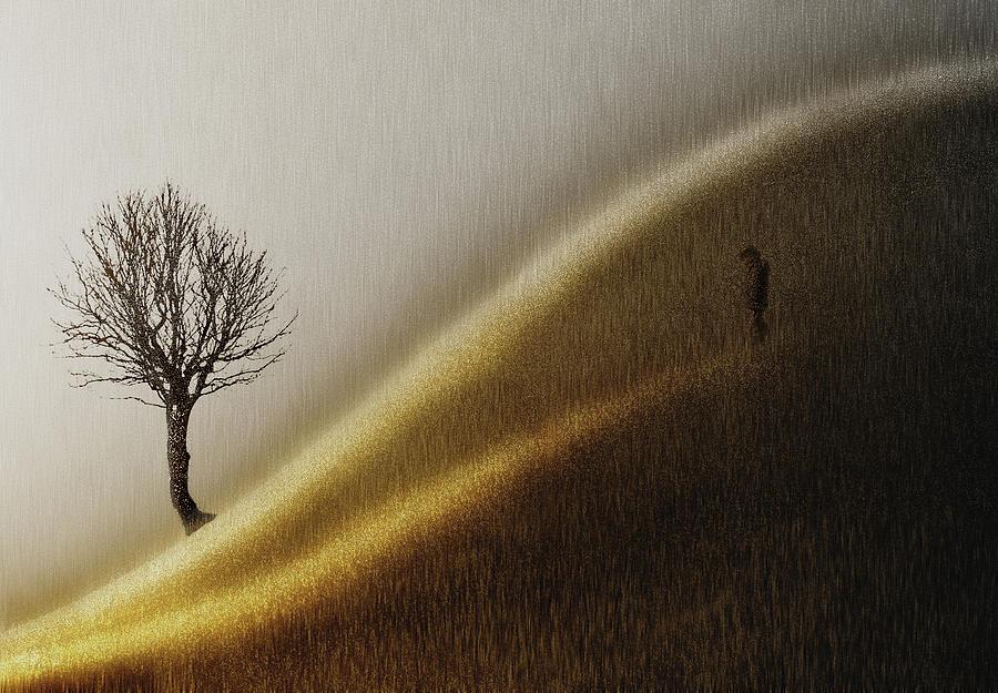 Hill Photograph - Golden Hills by Helge Andersen