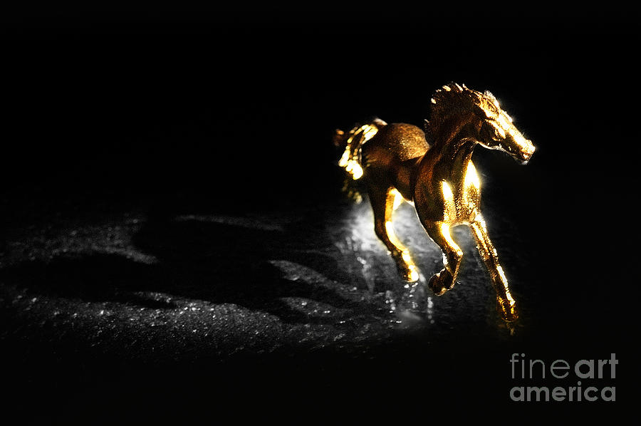 Golden Photograph - Golden Horse by William Voon