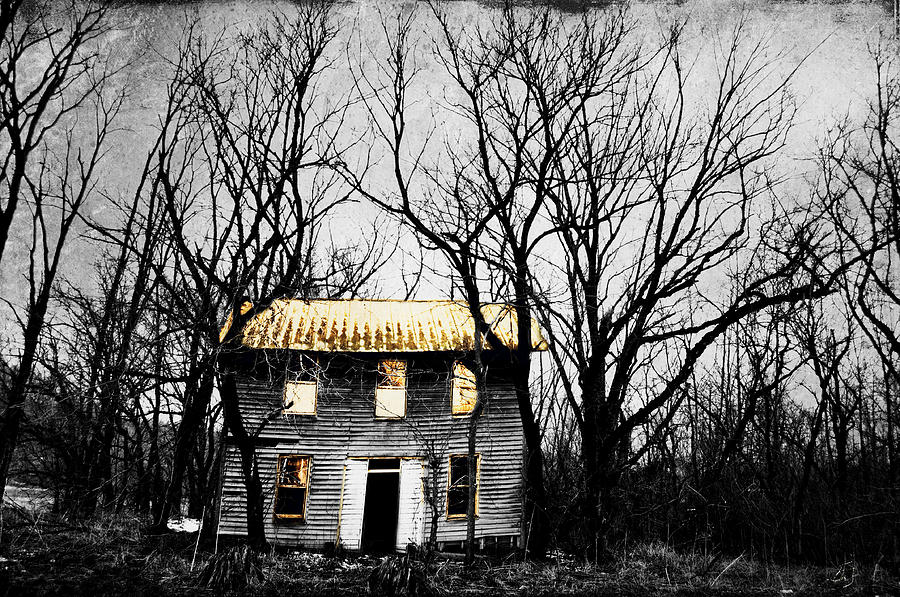 Abandoned House Photograph - Golden House by Emily Stauring