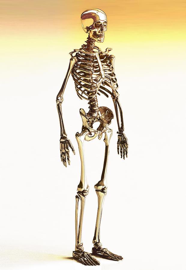 Golden Human Skeleton Color Sketch Digital Art by Nenad Cerovic