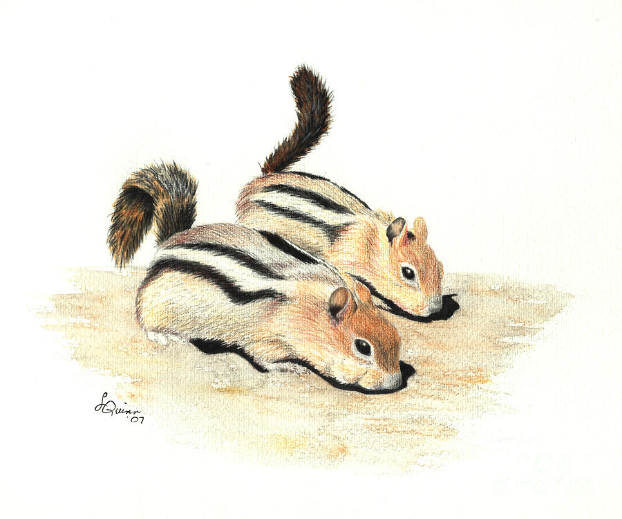 Nature Painting - Golden-mantled Ground Squirrels by Lynn Quinn