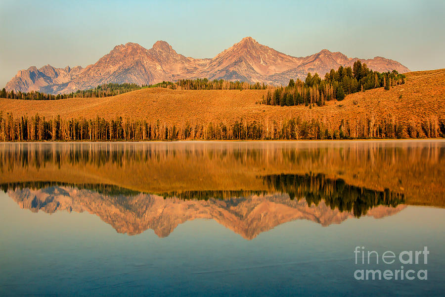 Rocky Mountains Photograph - Golden Mountains  Reflection by Robert Bales