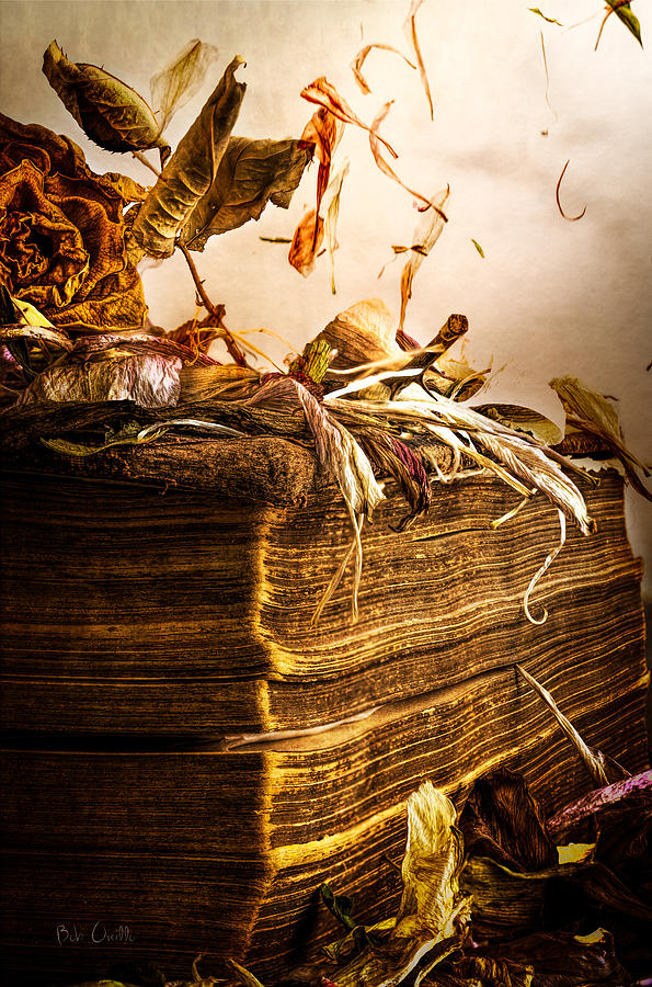 Book Photograph - Golden Pages Falling Flowers by Bob Orsillo