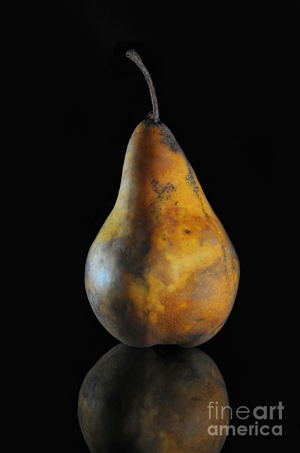 Pear Photograph - Golden Pear by Dan Holm