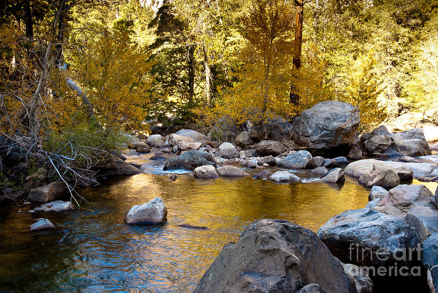 Roaring River Photograph - Golden Pool On Roaring River  1-7797 by Stephen Parker