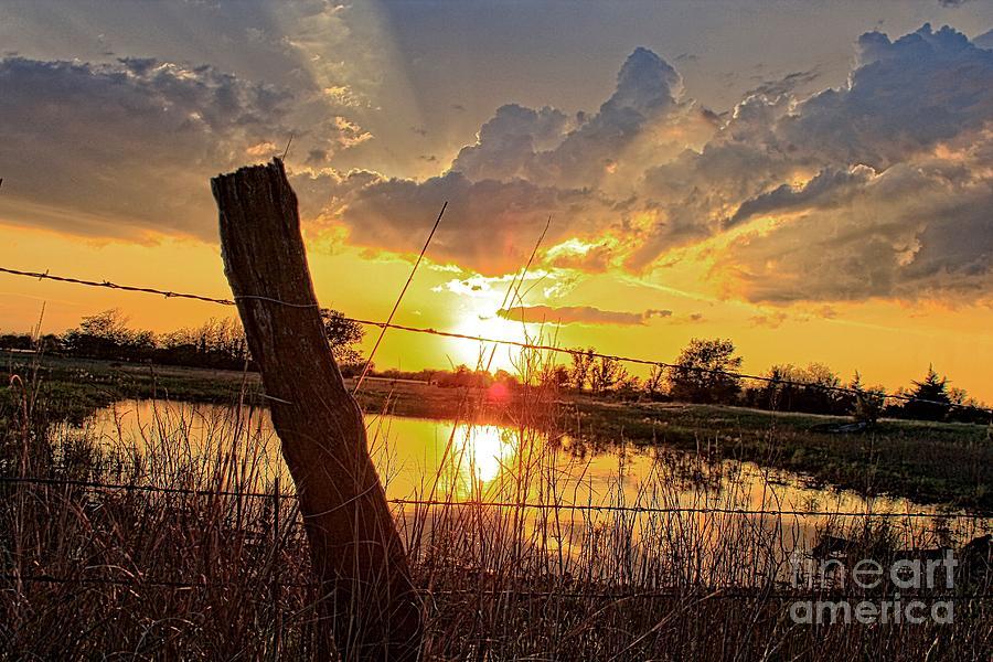Kansas Photograph - Golden Reflection With A Fence by Robert D  Brozek