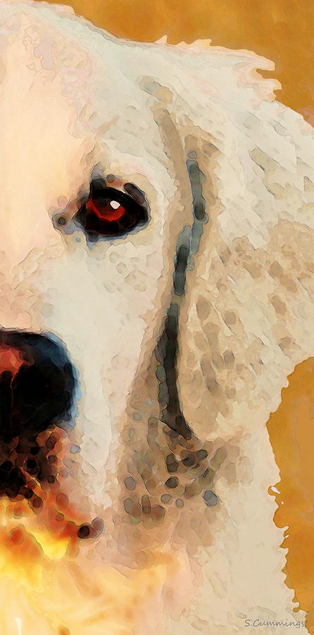 Golden Retriever Half Face By Sharon Cummings Painting By Sharon