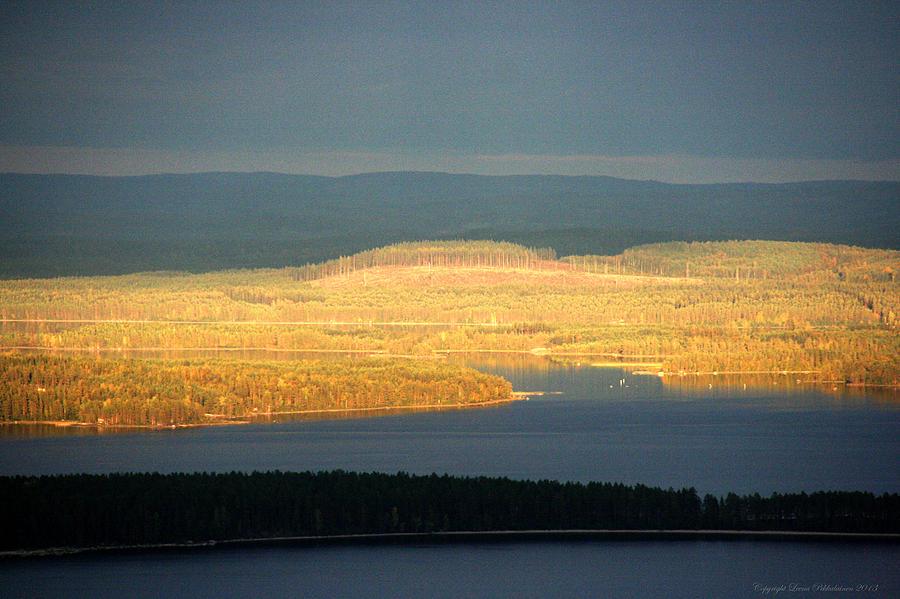 Forest Photograph - Golden Shores by Leena Pekkalainen