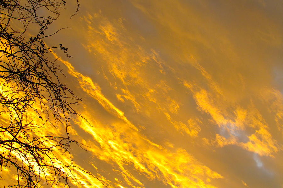 Sky Photograph - Golden Sky by Andrea Dale